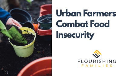 Urban Gardening as a Solution for Food Insecurity and Development of Communities